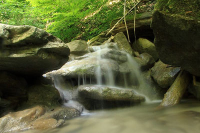 Долина реки Жане, Геленджик