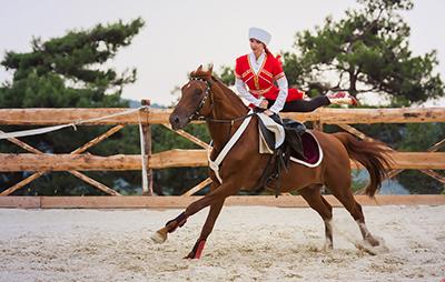 Галерея «Белая лошадь», Геленджик, вид