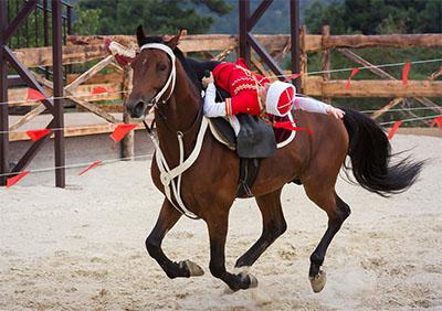 Галерея «Белая лошадь» , Геленджик