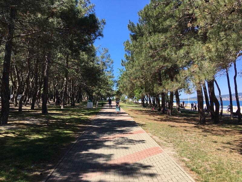 На набережной Геленджика уже гуляют