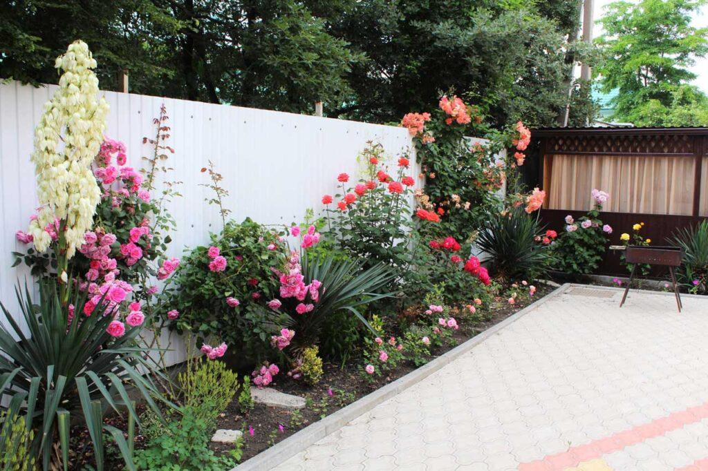 Розы и мангал
